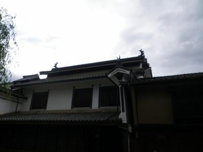 Ku16_2